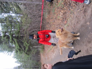 "Sara Brisson from the bank as a lion tamer. Needless to say the ""lion"" was a big hit."