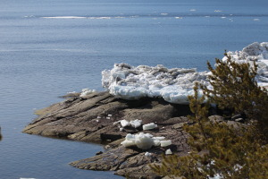 large ice floes are still attached to the rocks on Point L'Islet