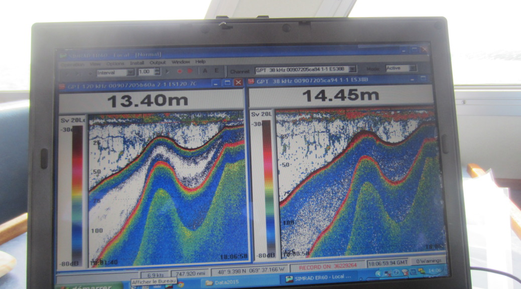 Graphic data images at two different levels of sonar pulse