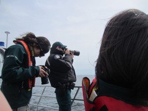 very big camera lenses to capture whales at a distance