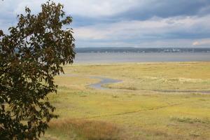 Impressive salt marshes