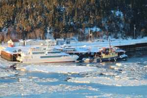 Yachting weather:  -22 and windy